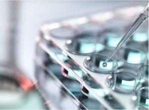 nanoteknologia, nanopinnoite